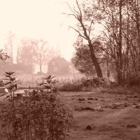 Dimmiga höstdagar på landet